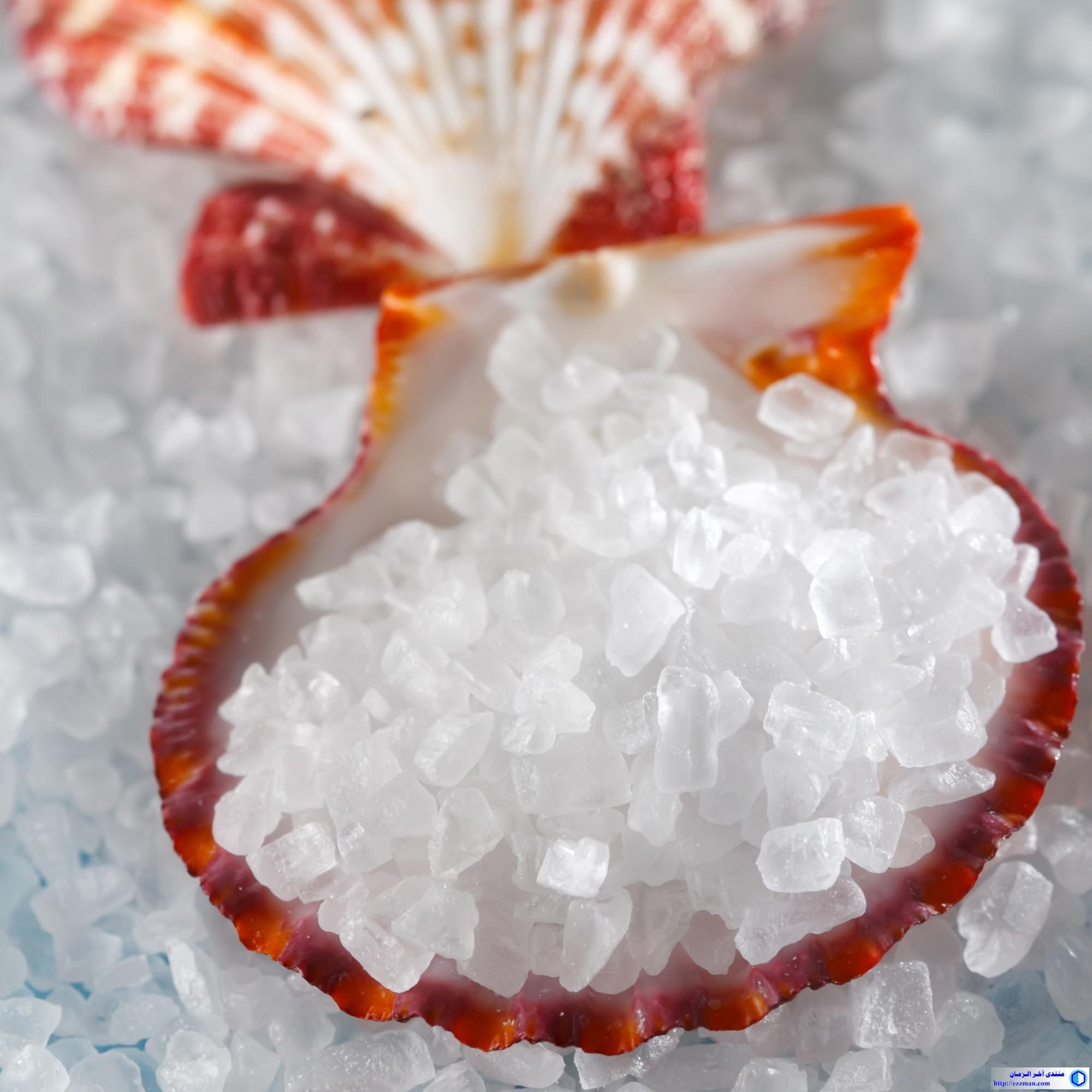 القوى الكامنة الملح البحري