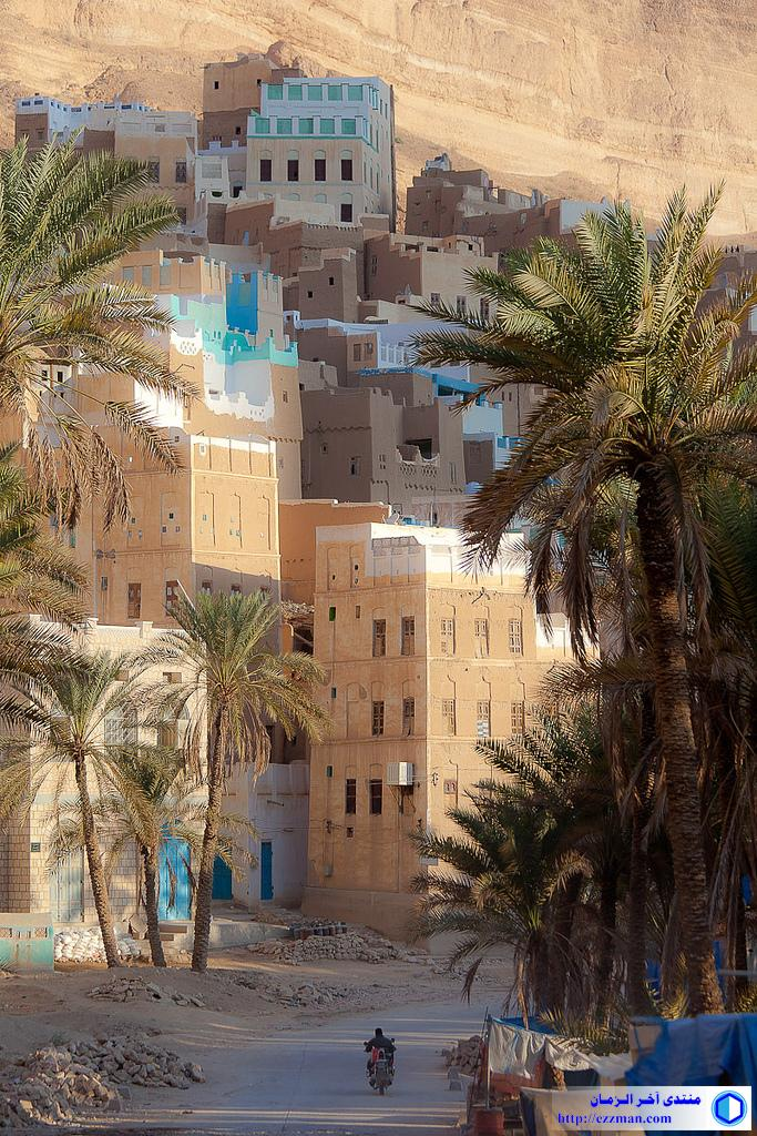 منظر اليمن